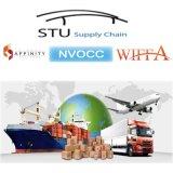 De Cargadoor van China Shenzhen/Shanghai/Ningbo/Qingdao/Guangzhou aan St. Lous/de Vrachtvervoerder van Jacksonville