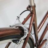 2017台の新製品の高品質都市バイク(CTB8)
