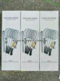 De Racket van het Badminton van het strand met Netto wordt geplaatst die