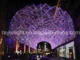 防水LEDのクリスマスLEDの装飾ライト工場LEDライト