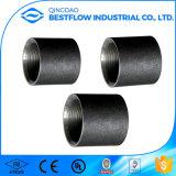 Accoppiamento mercantile d'acciaio DIN2999