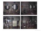 Automatischen stachelige Birnen-Stau-Produktionszweig beenden