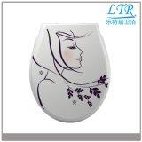 Duroplast materieller Weiche-Abschluss-dekorativer Toiletten-Sitzdeckel