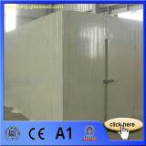 El panel de emparedado prefabricado del poliuretano de la casa