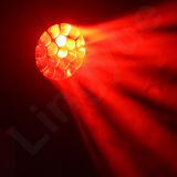 19X15W DMX haz Sharpy LED Luz principal móvil de la abeja de ojos
