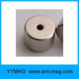 N35-N52 de Magneet van NdFeB van de Ring van de Magneten van het neodymium