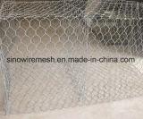 十六進プラスター金網の網