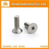 Parafuso principal de Csk do soquete Hex do aço inoxidável M5 DIN7991