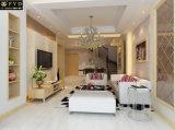 Carrelage en marbre en porcelaine pour votre décoration moderne Jd82011h