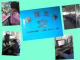 Zirconia-Porzellan mit der Computer-Vorlage gebildet im China-zahnmedizinischen Labor