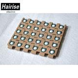 Hairise Plastikrollen-Typ modulares Förderband mit ISO