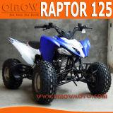 Nouveau Raptor style 125cc VTT