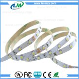 24V 60 LEDs / m 3528 IP20 Interior Frio blanco LED Strip Lights