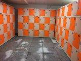 Cacifo impermeável para o quarto de chuveiro