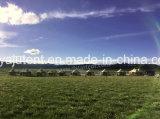 مصنع [ديركت سل] كبيرة [غلمبينغ] خيمة [كمب تنت] مسيكة خارجيّ