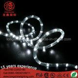 Luzes puras comerciais da corda do diodo emissor de luz do fio de cobre 220V 12V da loja ao ar livre