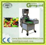 Limpe a linha de produção de frutas de produtos hortícolas