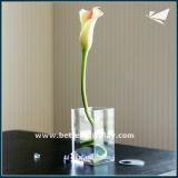 Ronda de acrílico transparente decoración florero florero (BTR-Q8069)