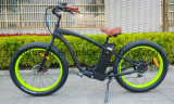 LCD表示が付いているEn 15194の脂肪タイヤの電気自転車