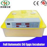 Una mini incubatrice delle 56 uova del piccolo pollo automatico che cova macchina