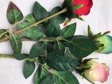 결혼식을%s 로즈 인공 꽃 실제적인 접촉 로즈 신선한 꽃, 가정 훈장 또는 생일