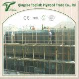 Molde da madeira compensada para a construção concreta da casa