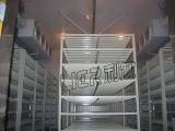 Chambre froide de conteneur professionnel/promenade dans la chambre froide pour industriel