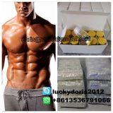 Farmaceutische Standaard Menselijke Growgh Peptide Tesamorelin Egrifta voor Bodybuilding