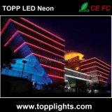 LED 네온 밧줄 빛을 바꾸는 방수 230V 120V 24V 색깔