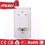 Energien-Wand USB-Stecker-elektrische Schalter-Kontaktbuchse Großbritannien