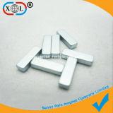 Magneet Van uitstekende kwaliteit van de Zeldzame aarde van de levering de Permanente