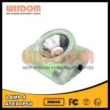 Lampada senza cordone più luminosa con 25000lux, i più nuovi indicatore luminoso esterno della lampada 4 di saggezza