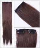 Extensão de cabelo humano (WWG2102)