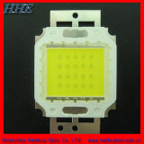 12V 20W de alta potencia LED blanco con RoHS