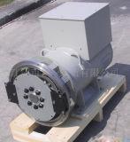 Brushless Alternator (DG224)