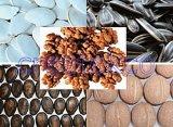 Le noyer, noyau de noix, graines de potiron, graine de pastèque