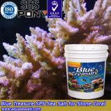 파란 보물 수족관 산호 탱크 (HZY005)
