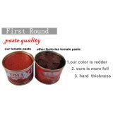 Fouetté la pâte de tomate de bonne qualité de bas prix