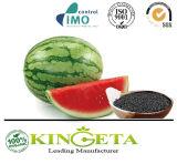 Fertilizante granulado orgânico de venda quente do ácido Humic