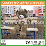 Valentijnskaart van de Teddybeer van de Pluche van de sweater draagt de Zachte