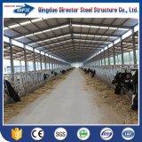Casa pintada galvanizada vertientes ligeras de la granja de la vaca/de las ovejas/del caballo/de cerdo del marco de acero para la venta