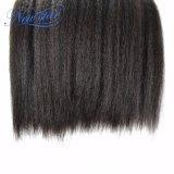 100% 처리되지 않은 사람의 모발 비꼬인 똑바른 씨실 두꺼운 머리를 길쌈하는 최상 Malaysian Virgin 머리