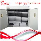 2640 بيضات تماما آليّة [إغّ-تثرنينغ] دجاجة بيضة محضن
