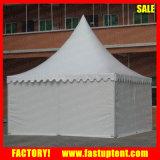 Deutschlandim freiengazebo-Garten-Zelt 5X5m 6X6m mit Vorhang