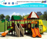 Playground Equipment Factory Sales Playground for Amusement Park (HA-07801)