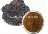 Polisacárido de 10%~50%, extrato natural puro do cogumelo de Chaga/extrato Obliquus de Inonotus