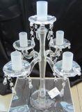 5장의 서리로 덥는 포스터를 가진 결혼식 훈장을%s 명확한 유리제 촛대
