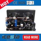 Aprovado pela CE Copeland Compressor da unidade de condensação para armazenamento a frio