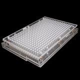 Orifices de remplissage de 400 000 Capsule Capsule Machine de remplissage avec la poudre en appuyant sur la plaque