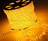 220V 밧줄 지구 편평한 3개의 철사 LED 유연한 네온 밧줄 빛